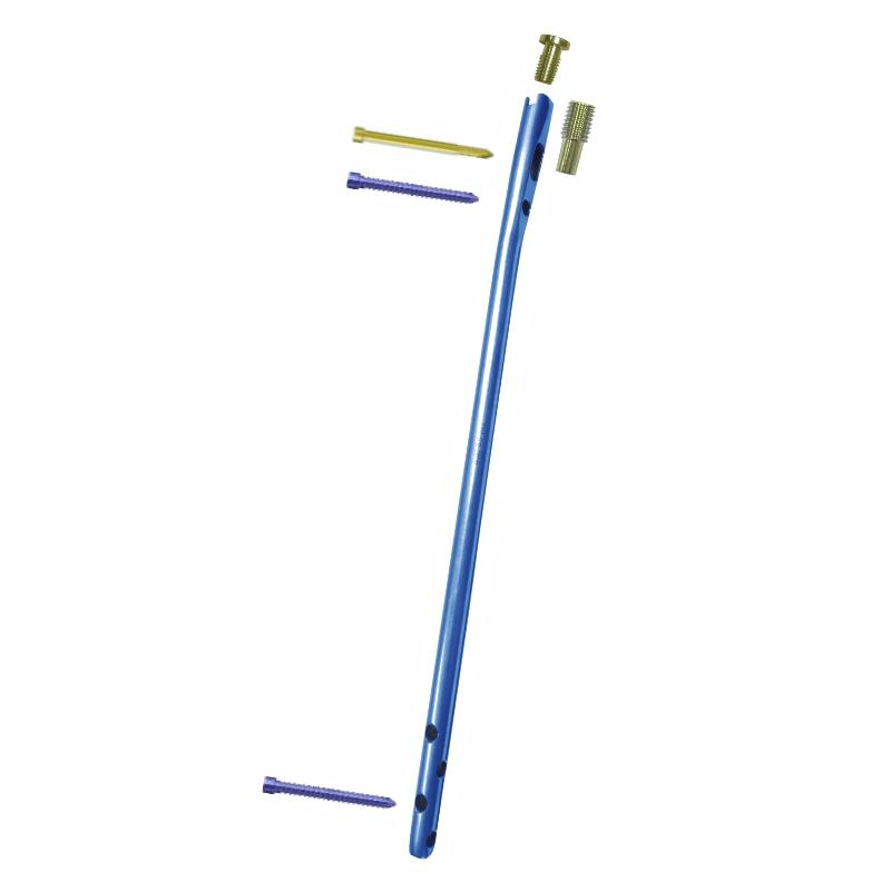Konzept Humerus Nailing System in Titanium